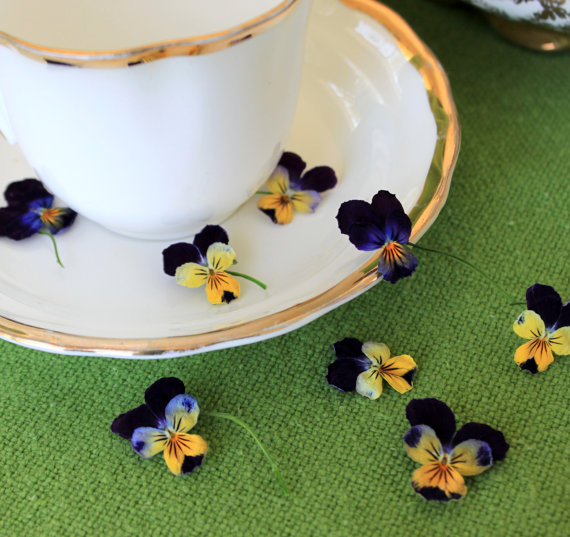 Beautiful Dried Viola Flowers - Alternative Confetti