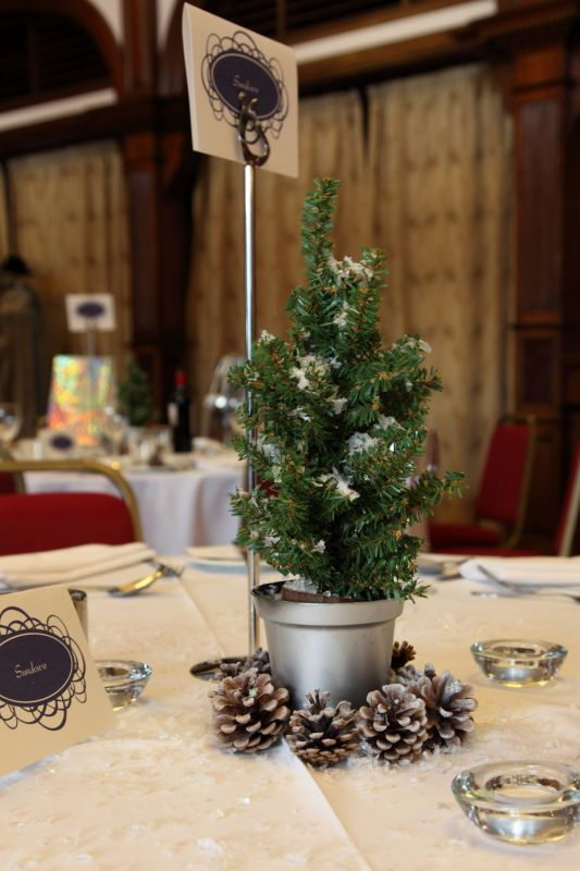 Mini Christmas Tree Centrepieces
